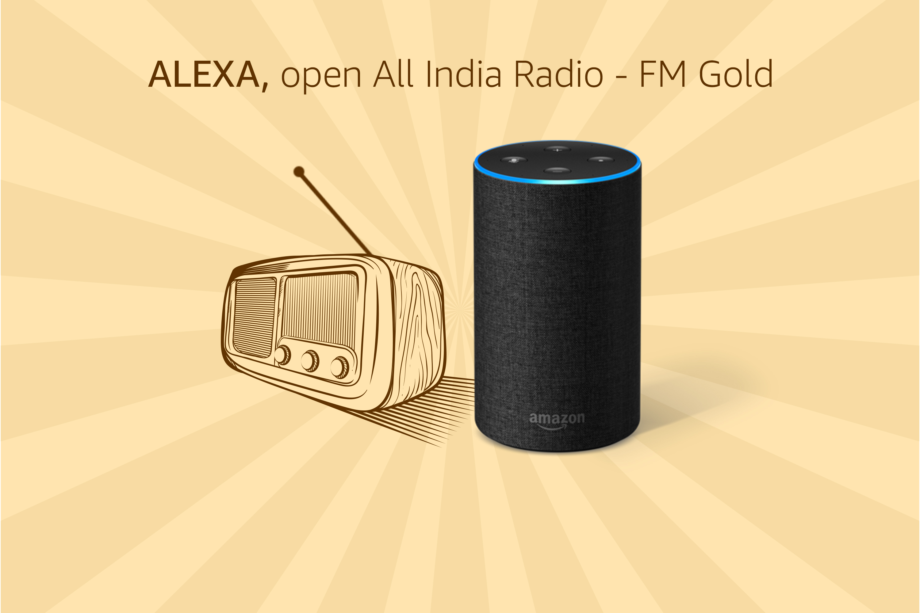 Access over 350 radio stations with Alexa in India