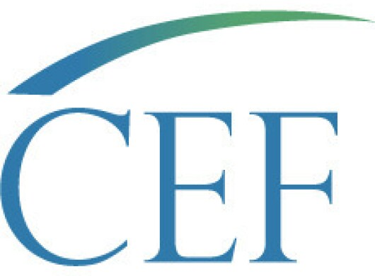 Logo of CEF, an Amazon Sustainability partner