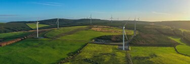 An image of a wind farm in a green field with windmills around it.