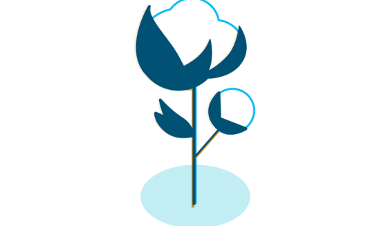 An illustration of a cotton flower symbolizing Amazon's cotton policy.