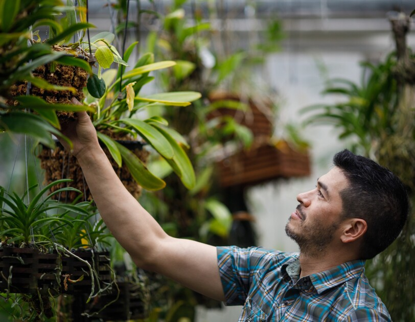 Amazon horticulturist Michael Fong in greenhouse