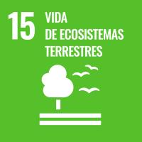 UNSDG 15 Vida de ecosistemas terrestres