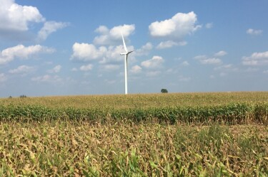 A wind turbine in a lush field with a tree in the distance.