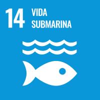 UNSDG 14 Vida submarina