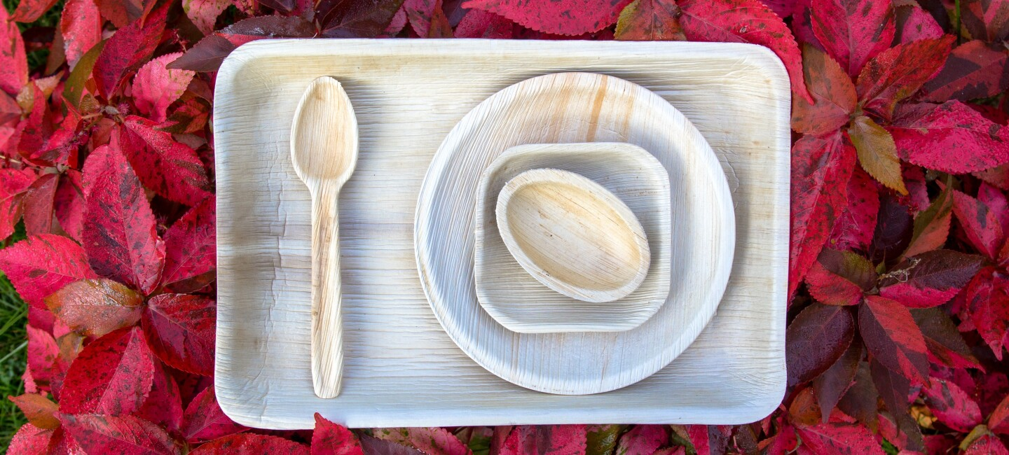 Eco friendly dinner ware
