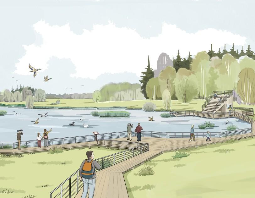 våtmark illustration