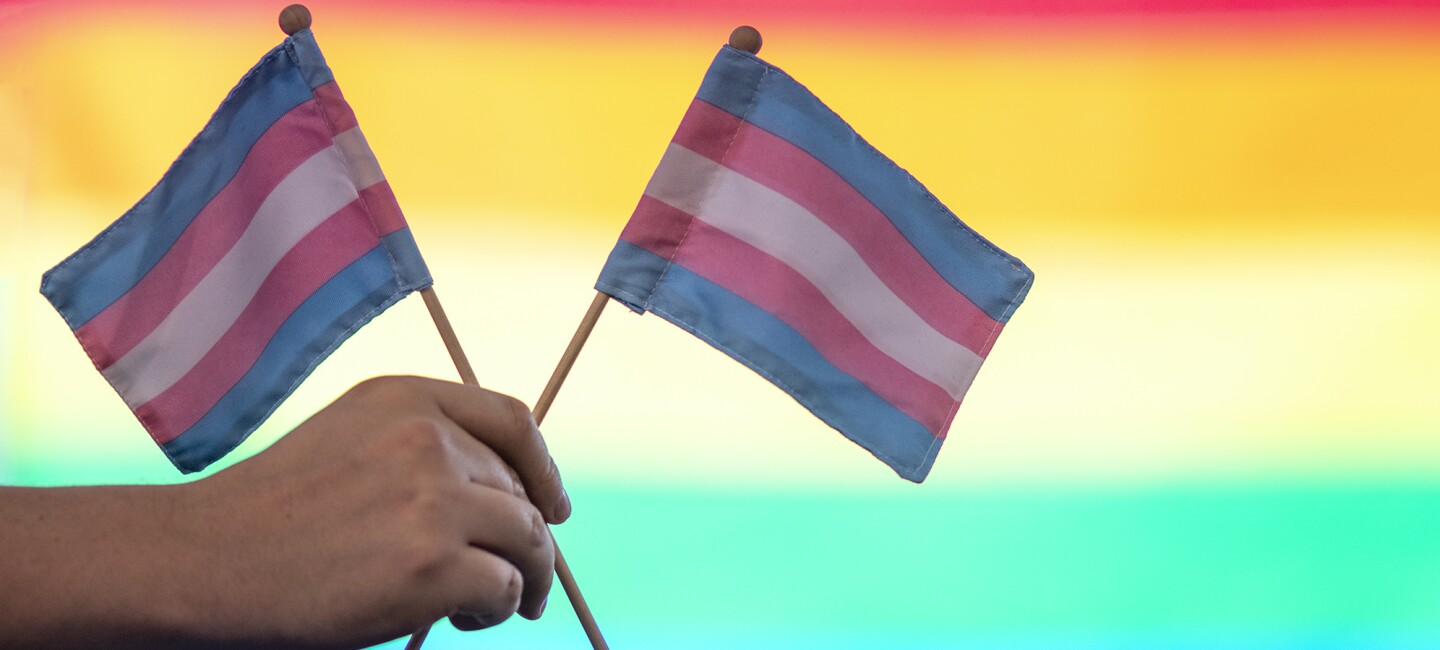 A hand holds two small Trans Pride flags with a backlit, soft-focus LGBTQ rainbow pride flag as background