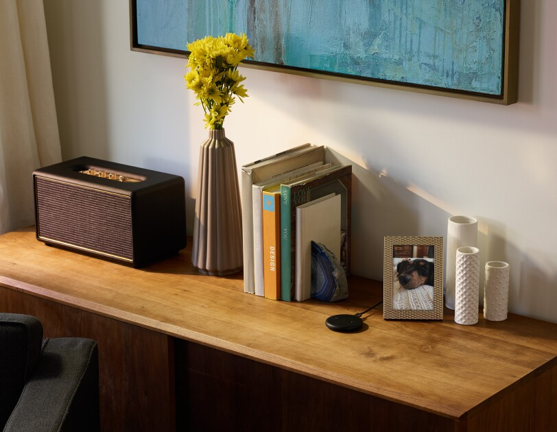 A black Echo Input device on a console table in a living room setting. Near the device is a framed photo, three ivory vases, several books, a vase with flowers and a radio.