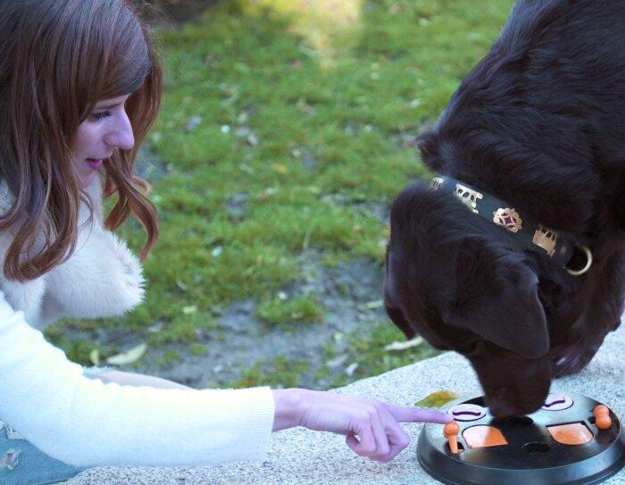 Marian Oliveira es portuguesa y trabaja en las oficinas corporativas de Amazon en Madrid. En la foto está enseñando a su perro, un labrador de color negro, cómo conseguir caramelos dentro de un juego de plástico que se encuentra en el suelo de un parque.