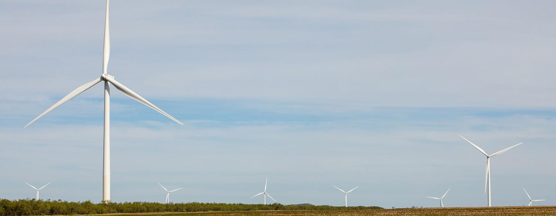 Amazon Wind Farm Texas (Nachhaltigkeit)