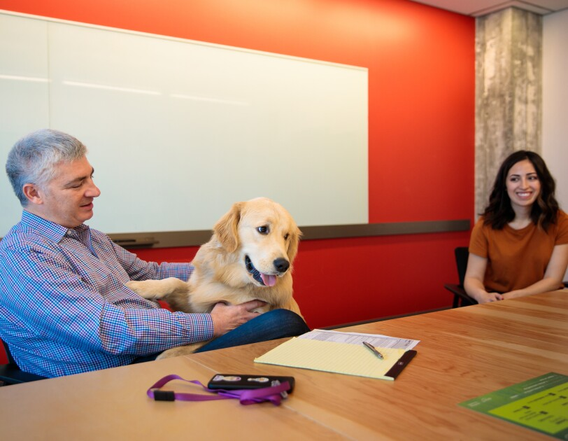 A man and a woman sit at a conference room table. A golden retriever climbs up and greets the man.