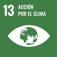 UNSDG 13 Acción por el clima