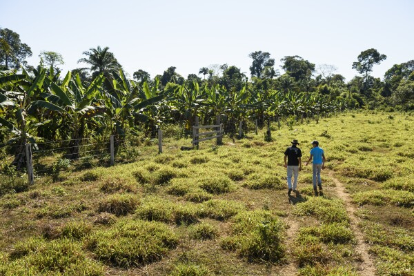 Pedro Rodrigeus De Oliveira and Matheus Correia Dutro walking to the forested area that the Nature Conservancy is working on with them to restore, Brazil.