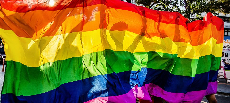 LGBTQ_flag_pride.jpg