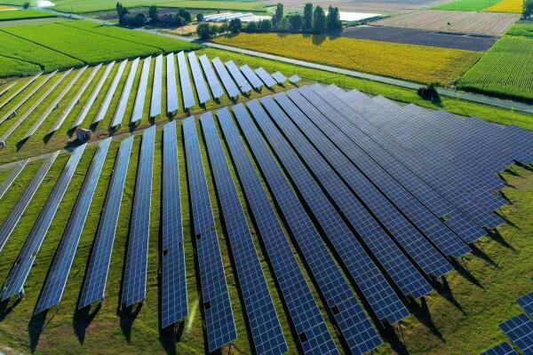 Campos verdes que en uno de ellos hay placas solares. En la foto solo se ven campos verdes, no hay cielo. Los cacmpos son de diferentes tonalidades de verde.