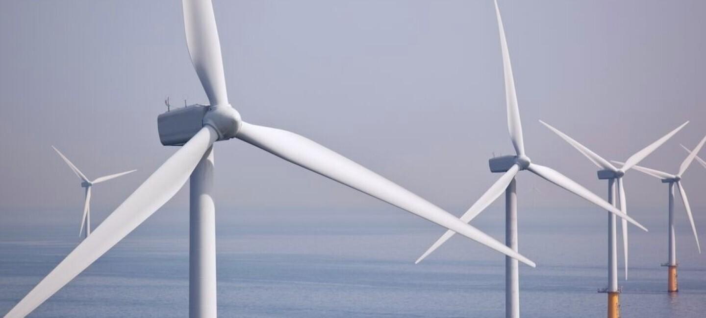Windräder stehen im Meer.