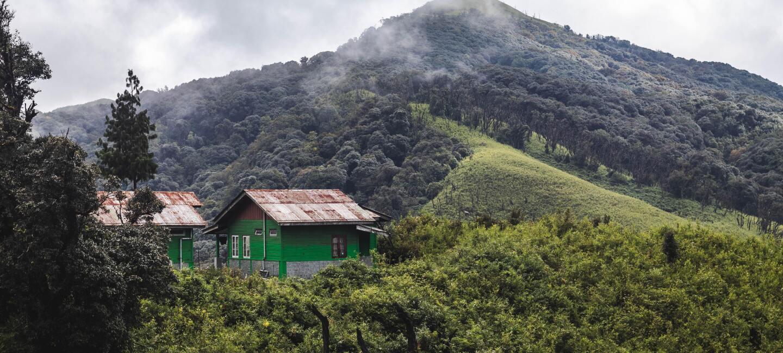 Nagaland India