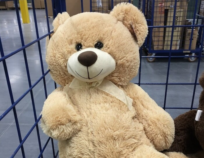 A larger-than-life-sized teddy bear that Hanna fondly remembers packaging just in time for a Valentine's Day delivery.