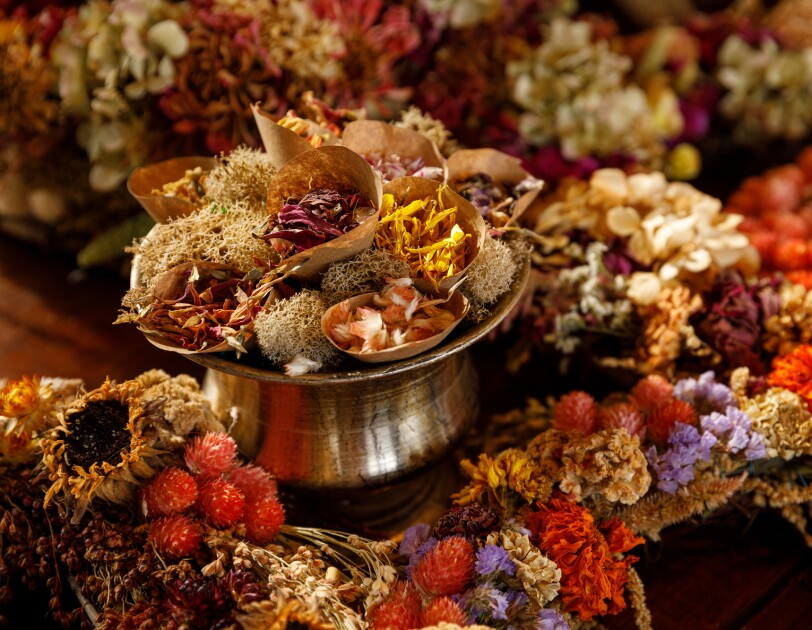 An assortment of dried flowers.