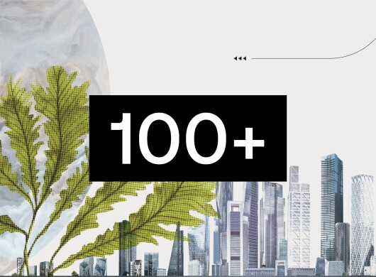 Immagine che mostra il numero 100+