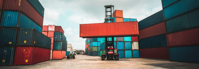 Una gru solleva un container in un porto. Intorno, pile di container colorati uno sull'altro.
