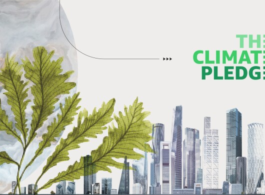 The Climate Pledge Signatories