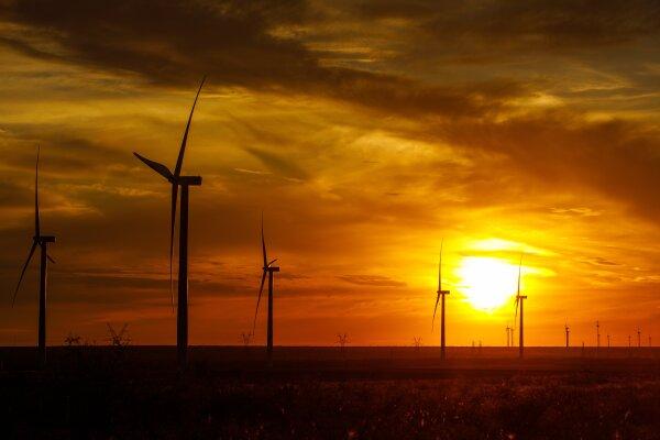 Amazon Wind Farm _2.jpg