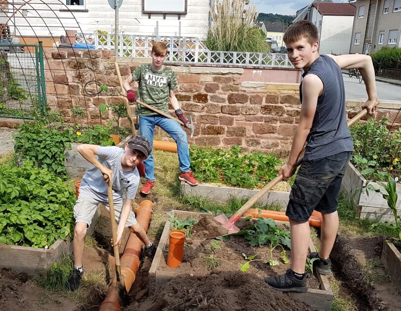 Drei Jungen mit Gartenwerkzeugen in den Händen stehen in einem Beet und schauen in die Kamera.. Um sie herum sind weitere  bepflanzte Beete.