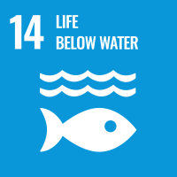 "UN SDG #14 reads ""Life Below Water"" and features an icon of a fish under two waves."