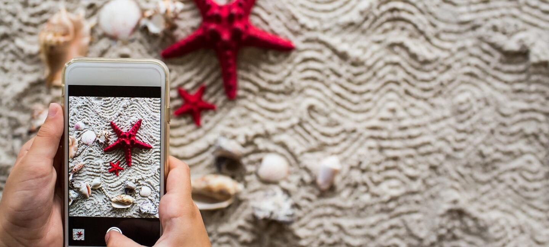 Mit einem Handy wird ein roter Seestern am Strand fotografiert.