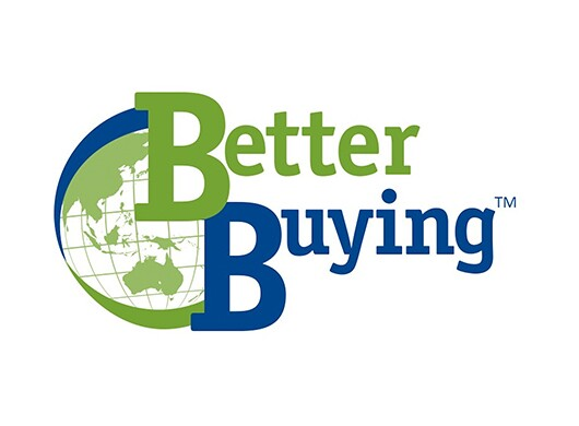 The words Better Buying in blue and green lay over an image of a globe in green on the left-hand side of the logo.