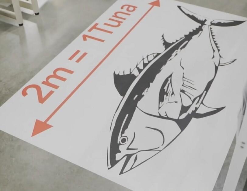 FCの床に貼られたマグロのイラスト。ソーシャルディスタンスを保つための2mをマグロで表現している