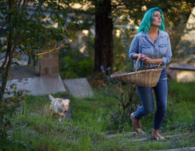 A dog trails a woman walking through a grassy area carrying a basket.
