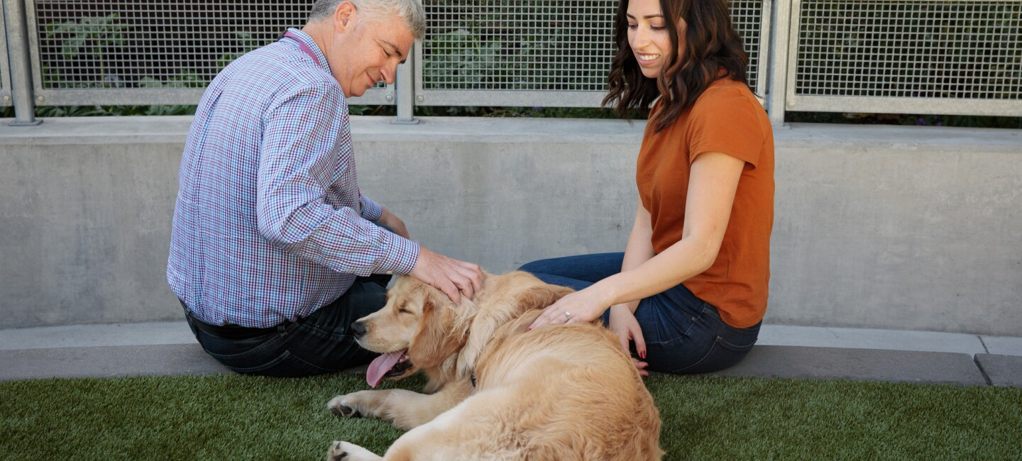 A man and a woman sit and pet a golden retriever.