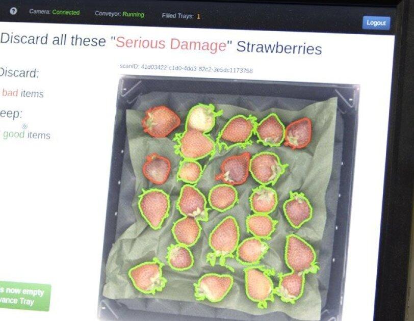 Wie Algorithmen Obst sortieren