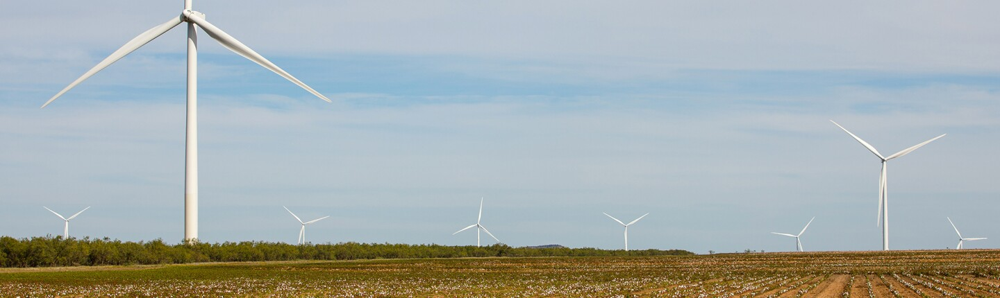 Amazon Wind Farm Texas