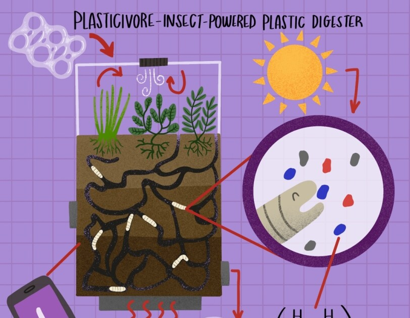 30_Plasticivore-_Insect-_Powered_Plastic_Digester