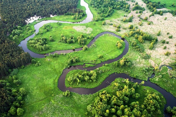 Aerial landscape wild river in summer