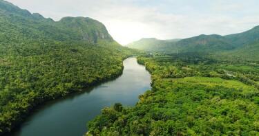 Ein Fluss fließt durch ein grünes Tal mit vielen Bäumen und Bergen.