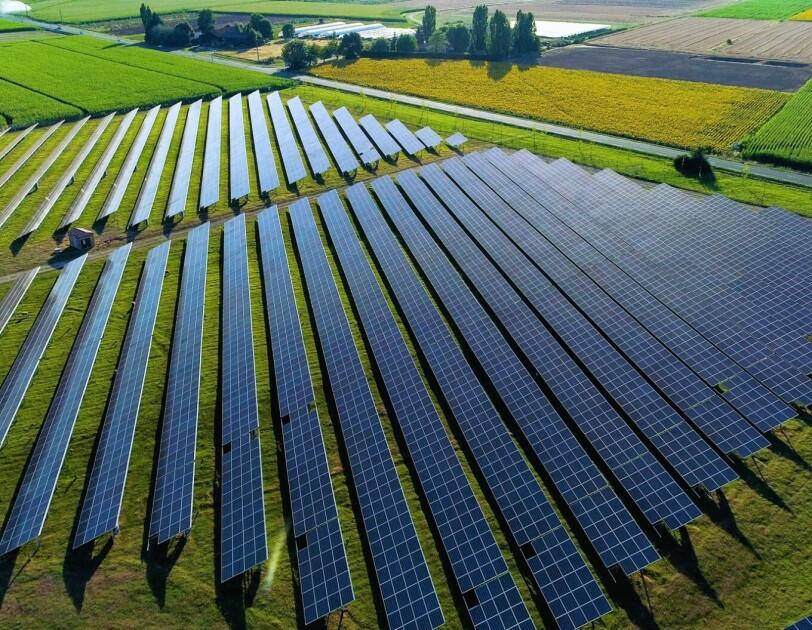 Solarpannels stehen auf einer Wiese