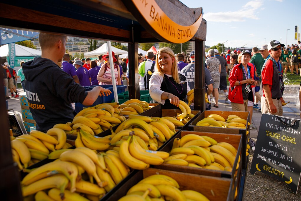 "The Community Banana Stand is shown in the foreground of this photo, with stacks of bananas available for attendees, for free, attended by two ""bananistas."" In the background, event attendees are seen walking and standing."