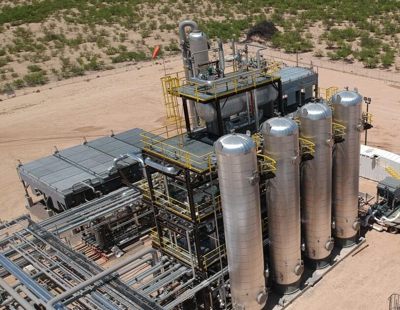 Image of Infinium plant