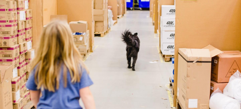 Ein kleines Mädchen ist von hinten zu sehen: Sie läuft durch einen Palettengang eines Lagers. Vor ihr ist ein schwarzer Rettungshund zu sehen.