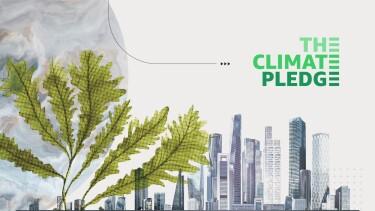 The Climate Pledge logo against a city backdrop