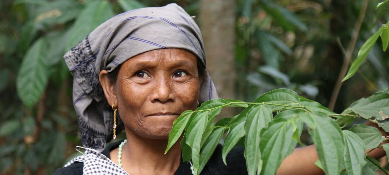 Lady farmer growing piper longum.jpg