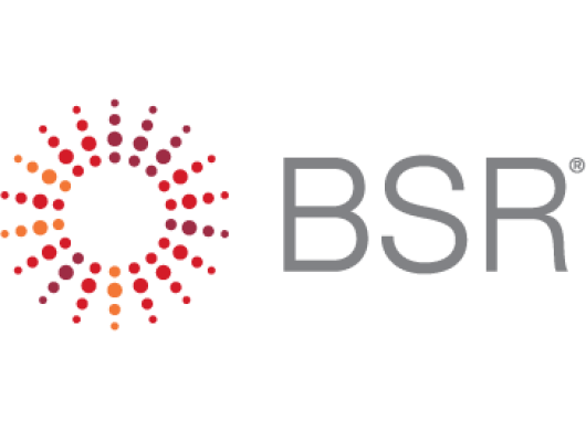 Logo of BSR, an Amazon Sustainability partner