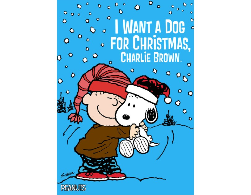 Linus, a character from the Peanuts cartoon, squeezes Snoopy, while standing outside. Snow falls lightly around them.
