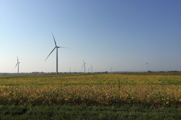 Eight wind turbines sit in a field of crops at the Amazon Wind Farm Indiana – Fowler Ridge