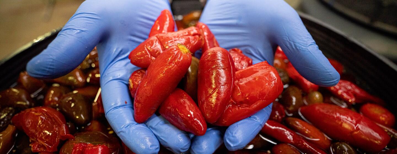 En primer plano jalapeños rojos macerados en un cubo negro. Unas manos con unos guantes de color azul agarran unos cuando jalapeños.